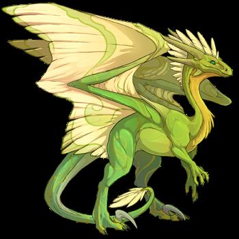dragon?did=31249974&skin=0&apparel=&xt=dressing.png
