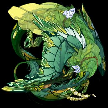 dragon?did=40143035&skin=0&apparel=2561,22919&xt=dressing.png