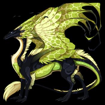 dragon?age=1&body=11&bodygene=23&breed=13&element=6&eyetype=0&gender=0&tert=101&tertgene=18&winggene=14&wings=155&auth=943501251ea3fd6cbf76241eb4025bea8fabb3b1&dummyext=prev.png