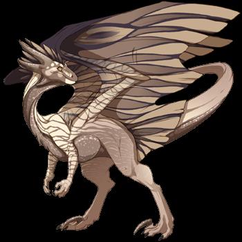 dragon?age=1&body=143&bodygene=5&breed=10&element=1&eyetype=1&gender=0&tert=143&tertgene=10&winggene=22&wings=143&auth=ec34fd154d21c815370646fd5f207452922a1dcb&dummyext=prev.png