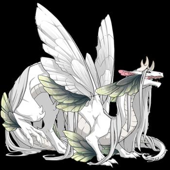 dragon?age=1&body=2&bodygene=0&breed=19&element=1&eyetype=2&gender=0&tert=129&tertgene=66&winggene=0&wings=2&auth=d77387d13f9ba725f0f54ff58f99dbe52e137238&dummyext=prev.png