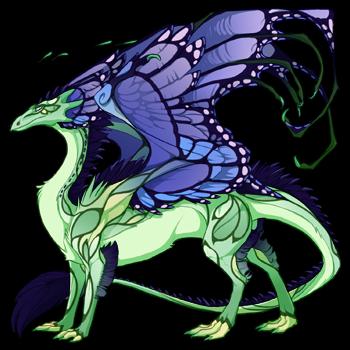 dragon?age=1&body=31&bodygene=13&breed=13&element=6&eyetype=0&gender=0&tert=111&tertgene=8&winggene=13&wings=19&auth=ef33fcd08b85a3f1c039a667c937fb00144fcf7e&dummyext=prev.png
