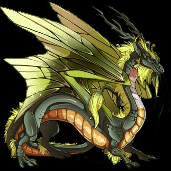 dragon?age=1&body=36&bodygene=17&breed=8&element=4&eyetype=0&gender=0&tert=140&tertgene=18&winggene=20&wings=155&auth=74b3482231b52b6a218c868810bf7b9bd1467a9f&dummyext=prev.png