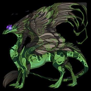 dragon?age=1&body=38&bodygene=23&breed=13&element=7&eyetype=7&gender=0&tert=38&tertgene=7&winggene=22&wings=95&auth=bf0787ecc6bc4eb30cad320a5214a627f9174c74&dummyext=prev.png