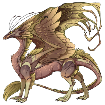 dragon?age=1&body=95&bodygene=20&breed=13&element=8&eyetype=0&gender=0&tert=159&tertgene=12&winggene=20&wings=173&auth=26edf194d62ece9e22e8ff8ff6bde4c0ae198ab8&dummyext=prev.png